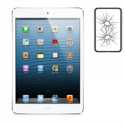 Cambiar Pantalla iPad Mini...