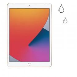 Limpieza y Diagnóstico iPad...